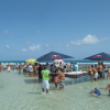Loisirs guadeloupe barbecue dans l eau marcobay 23032014 5